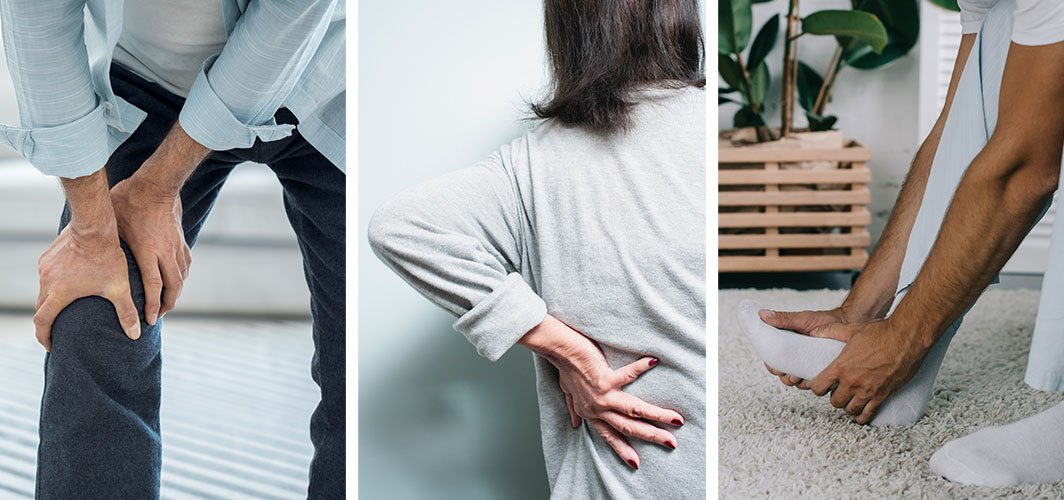 Common Bone and Muscle Problems in the Elderly: What Can We Do?